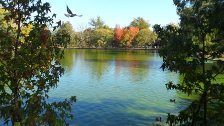 parc bordelais plan d'eau