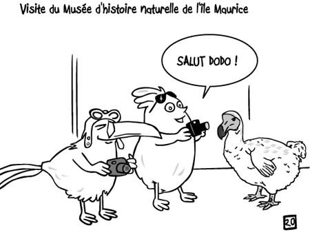 poussin ile maurice