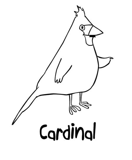 cardinal bd
