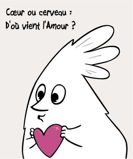 question amour